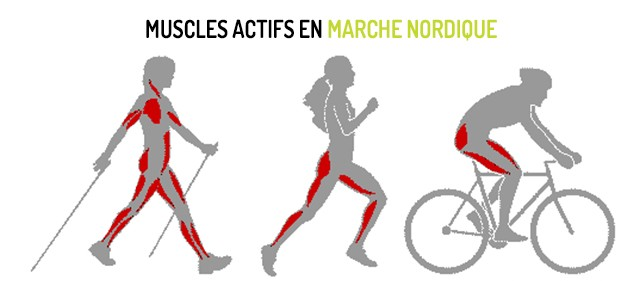 Marche Nordique nov 2015 2